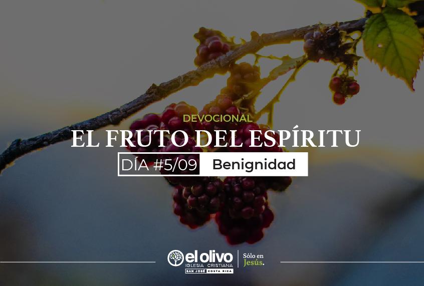 Devocional: El Fruto del Espíritu – Día #5